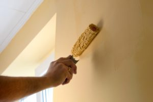 Painter Contractor Directory